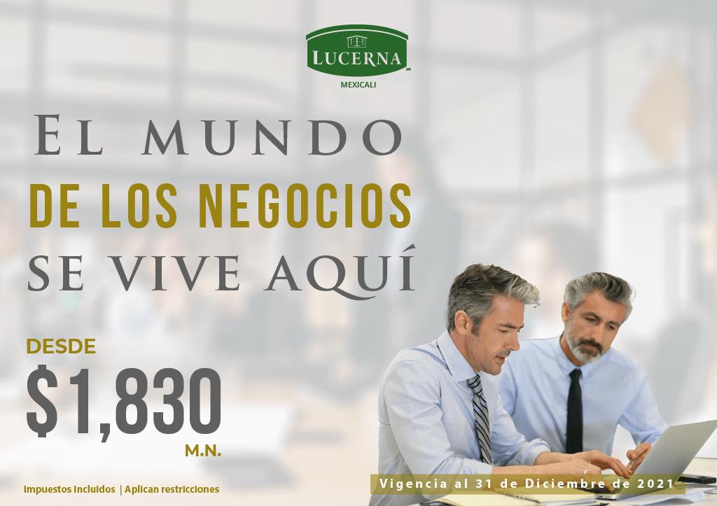 NEGOCIOS INSTITUCIONAL__web mexicali 1024 x 723
