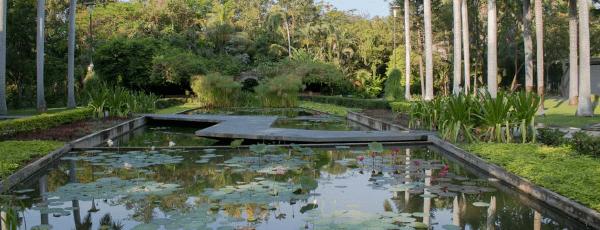 CULIACÁN_Jardin-botanico-2