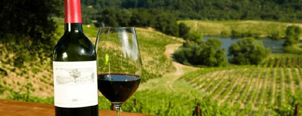 ENSENADA_Ruta-del-vino-2-